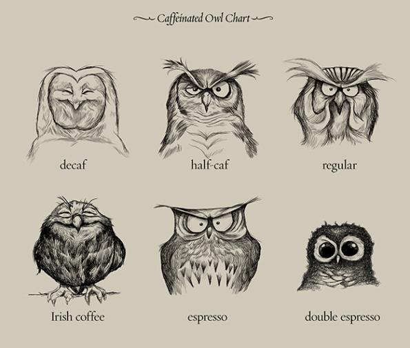 cafeMussol